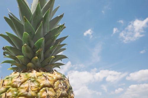 口コミ調べ!パイナップル豆乳ローションは効果ある?正しい知識で計画脱毛